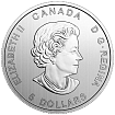 Канада Год петуха 2017 г. 1 oz Серебряная монета (Canada Lunar Year of Rooster Silver Coin)